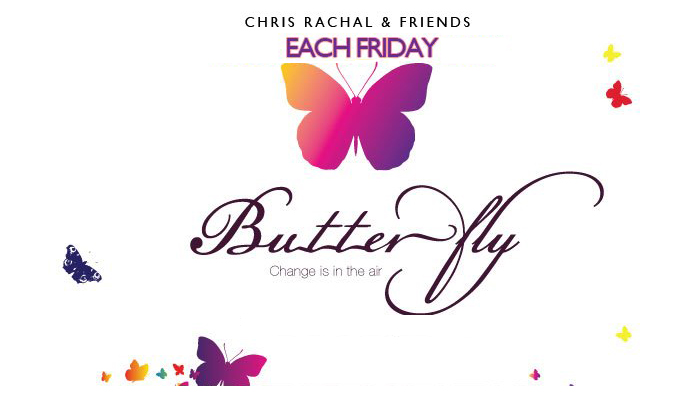 butterfly_banner